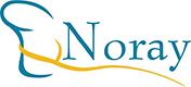 Noray Consultores